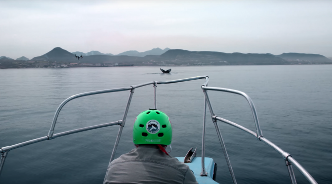 Here's how DJI's Snotbot drone works to research whales